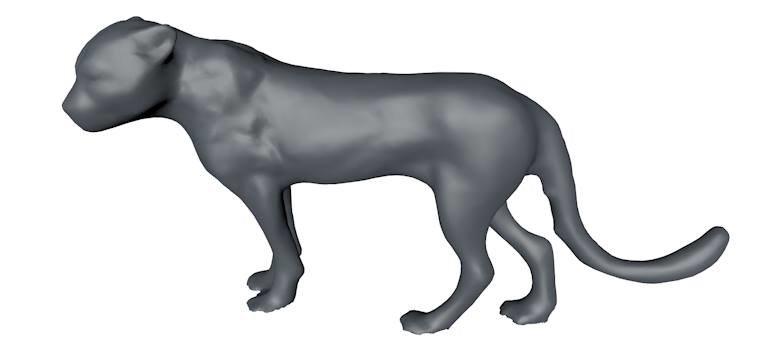 cheetah base mesh 3d model