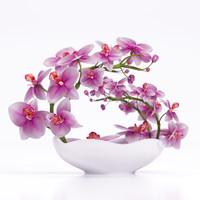 3d orchid flowers