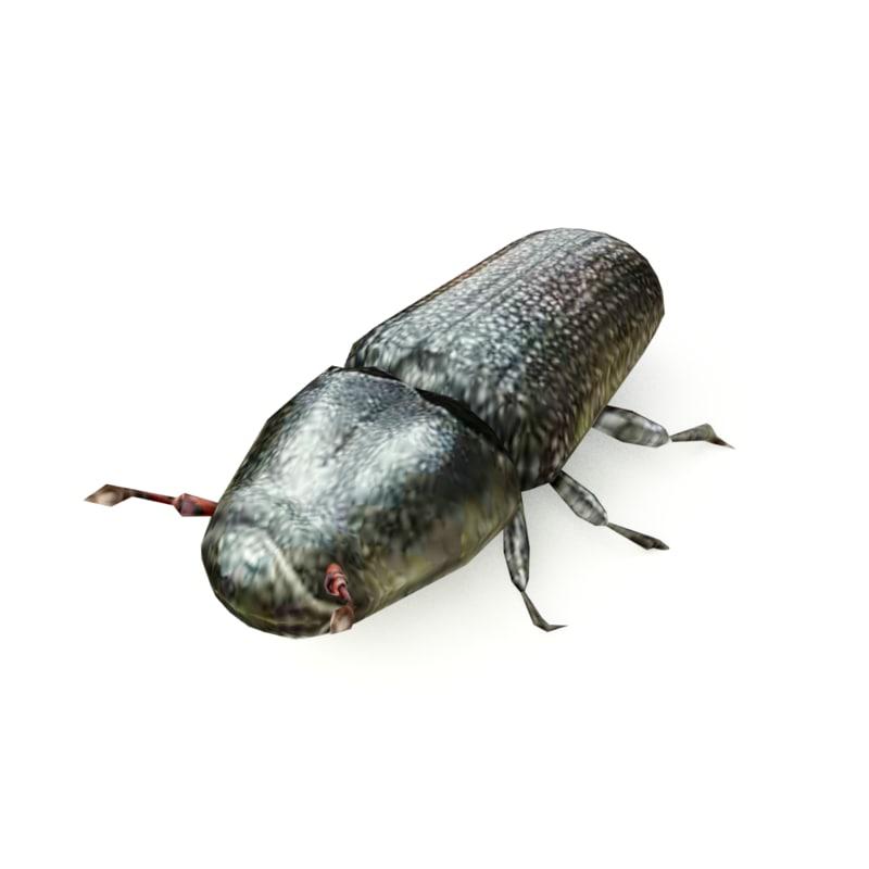3d model pine beetle
