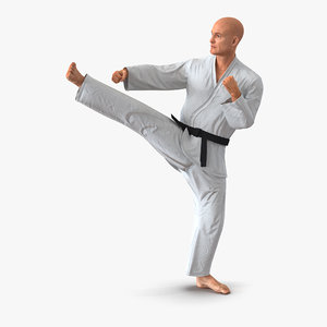 karate fighter pose 2 3d model