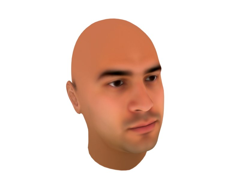 realistic human head 3d 3ds