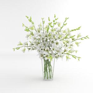 3d orchid flower white model