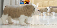 3d bulldog puppy