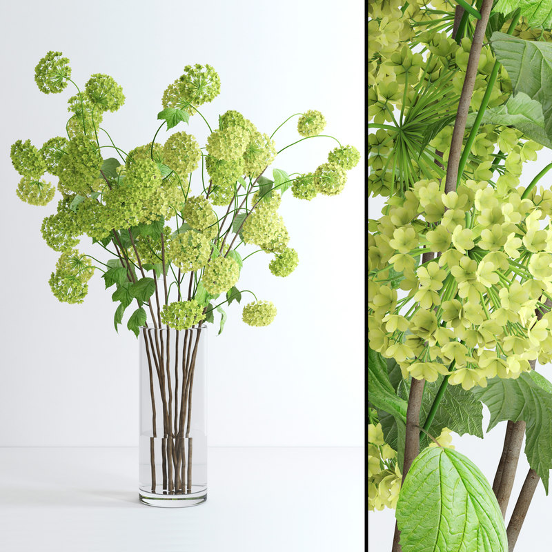 3d model jar viburnum flowers