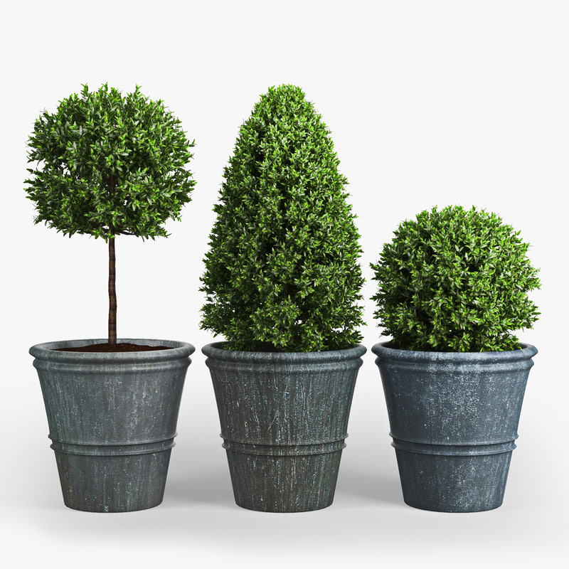 plant 3d ma