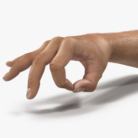 3d model man hands fur pose
