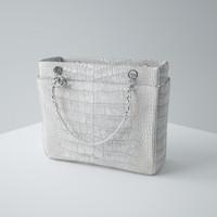 Chanel Handbag 05