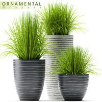grass pots 3d max