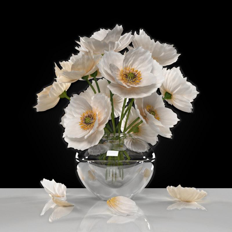max white poppies