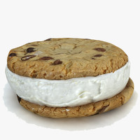 ice cream chocolate chip cookie