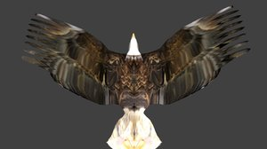 eagle rigged fbx free