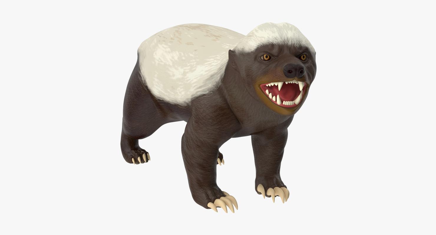 3d honey badger model