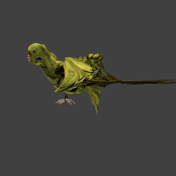 green budgerigar flapping wing animation 3d model