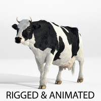 Cow - realistic - rigged and animated