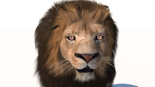 3d model rigged fur lion