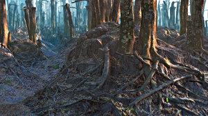 rain forest 3d max