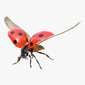 flying ladybug fur rigged 3d max