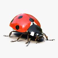 ladybug rigged max
