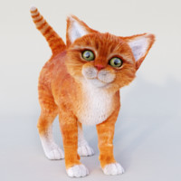 CAT(Orange Tabby)(RED) (FUR)