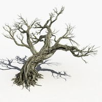 Dry Tree 15