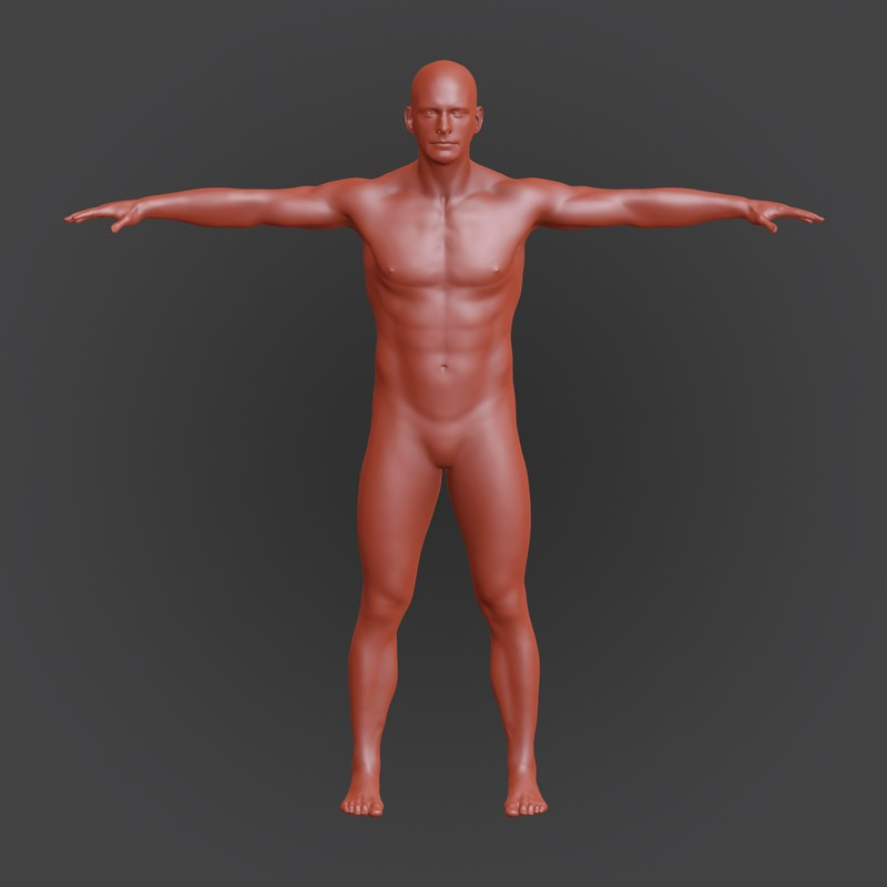 3d model of male details