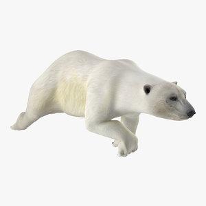 3d polar swimming