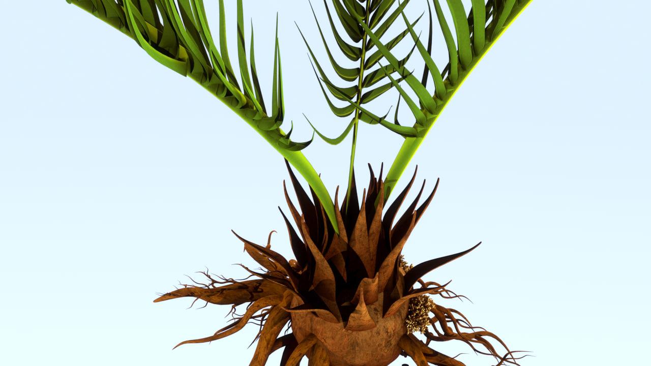 3d model vascular root