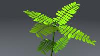 touch plant obj