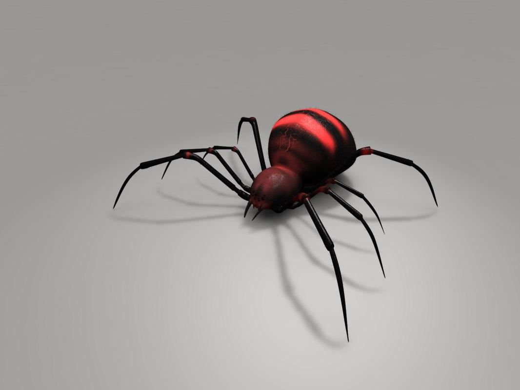 red spider 3d model