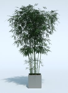 obj outdoor plant