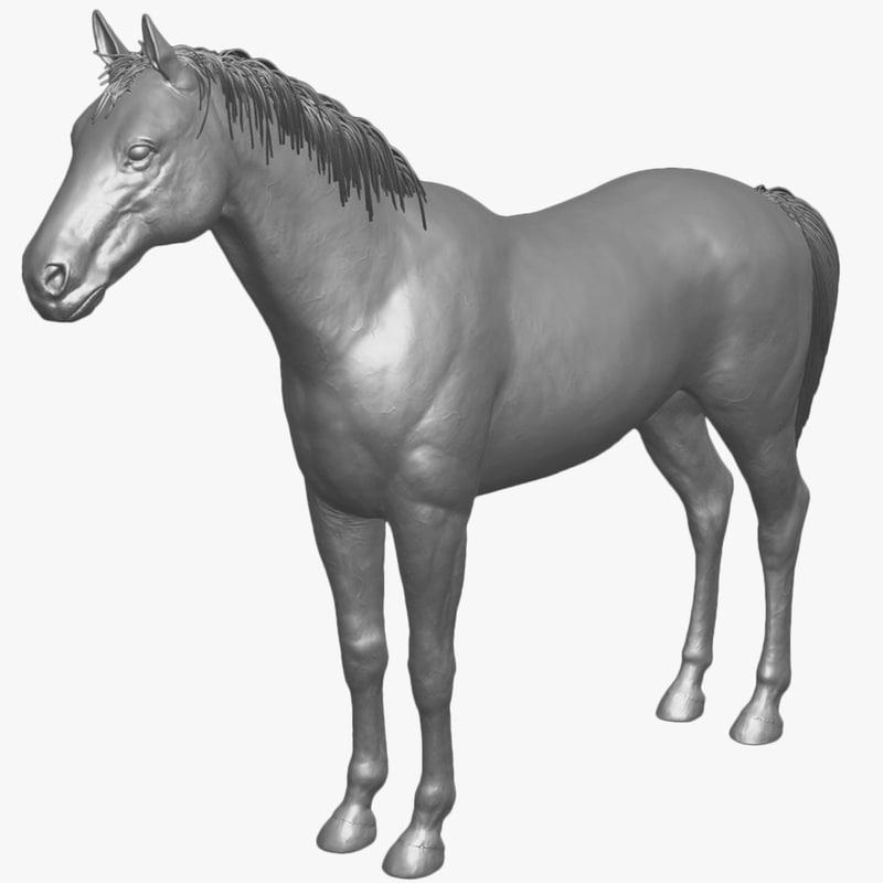 realistic horse unwrapped uvs 3d model