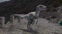 velociraptor max