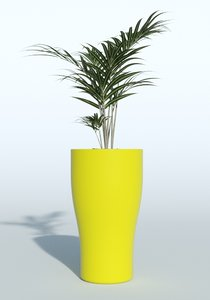 outdoor plant 3d obj