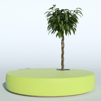 3d outdoor plant