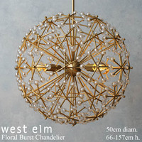 West elm Floral Burst Chandelier