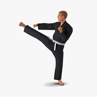 karate fighter pose 2 3d model