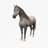 3d model horse andalusian grey