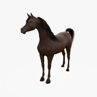 horse arabian bay max