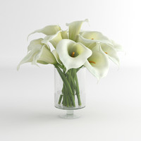 Calla Lily flower glass vase 01