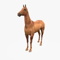 3d max horse akhal-teke buckskin