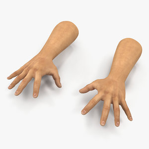 3d model man hands 2 pose