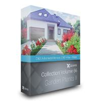 CGAxis Models Volume 66 Garden Plants II C4D