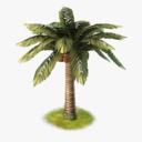 cartoon palm tree 3D models