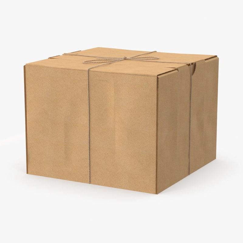 3d cardboard box twine model