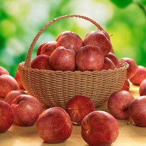 3d fresh apples model