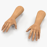 3d 3ds man hands 2