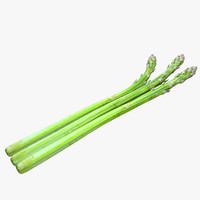 asparagus 3d model