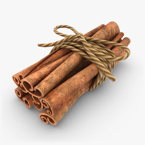 cinnamon 2 3d max