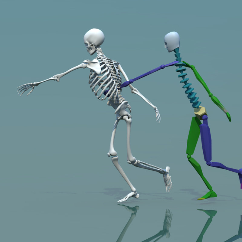 3d human skeleton combine biped