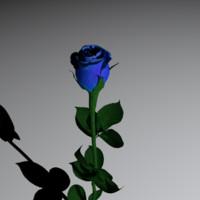 3d max beautiful blue rose